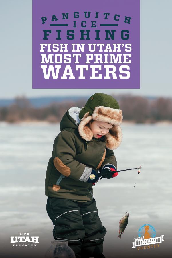 fishing-purple