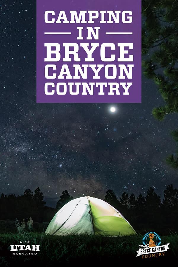 camp purple
