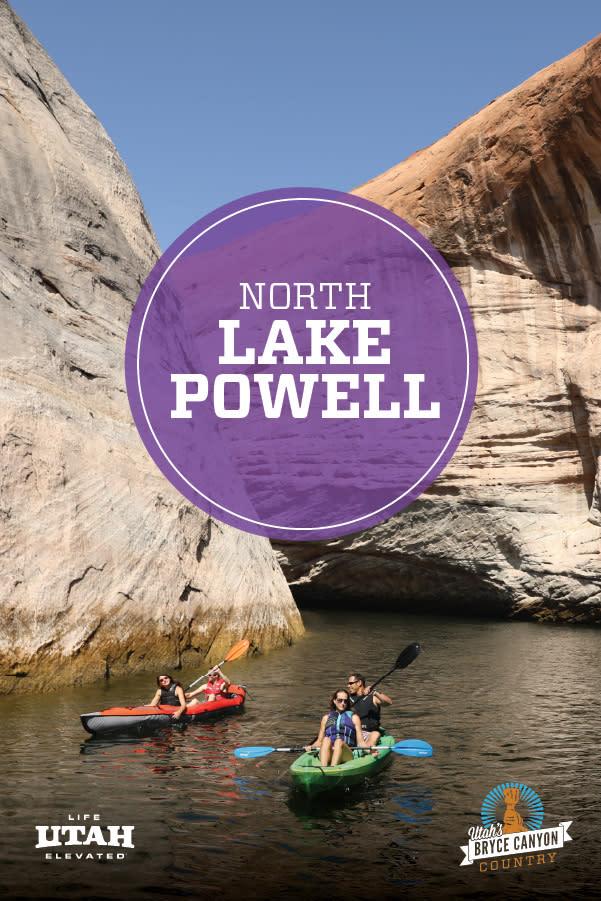 Lake Powell Purple