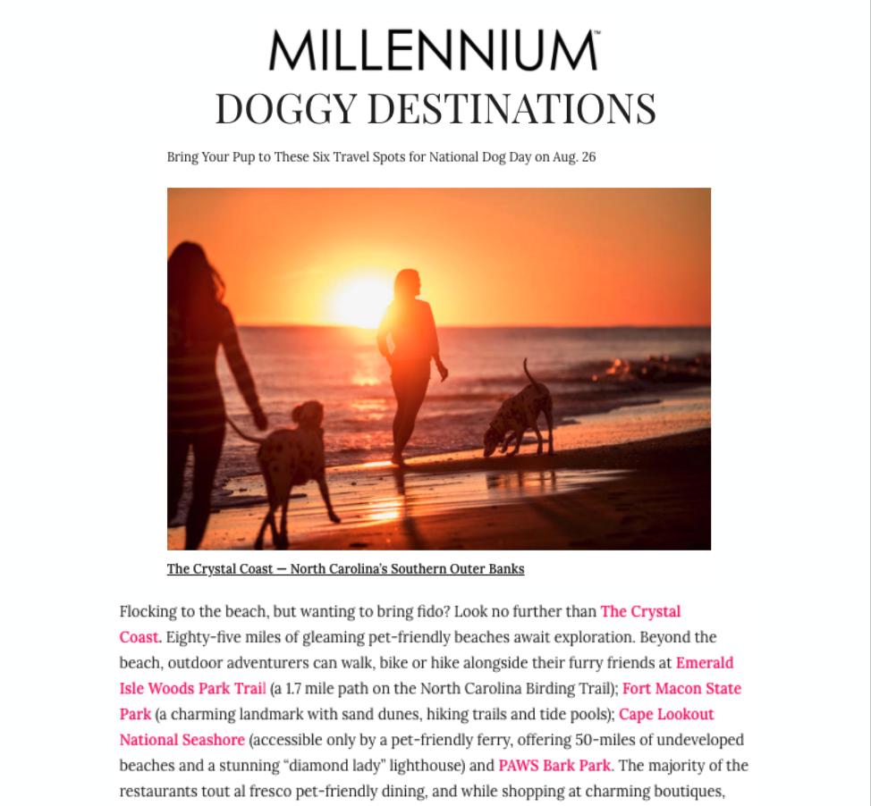 Millennium Press Release Cover