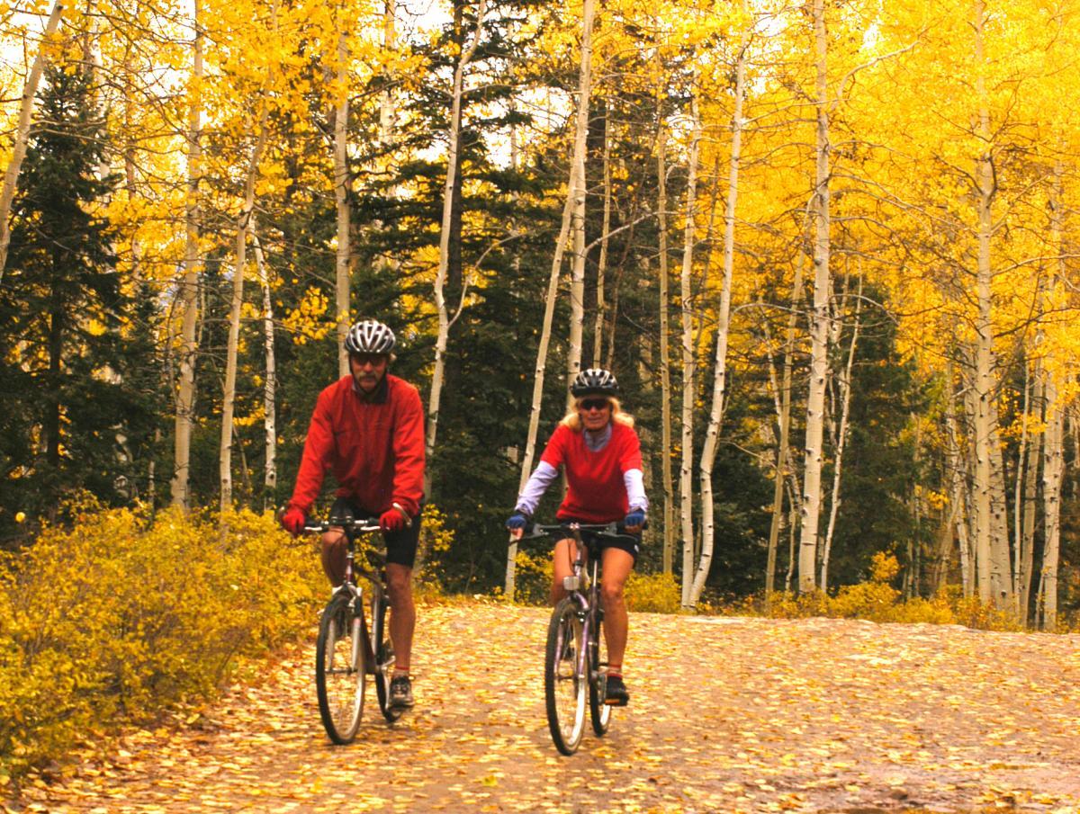 Biking Down La Plata Canyon in Fall
