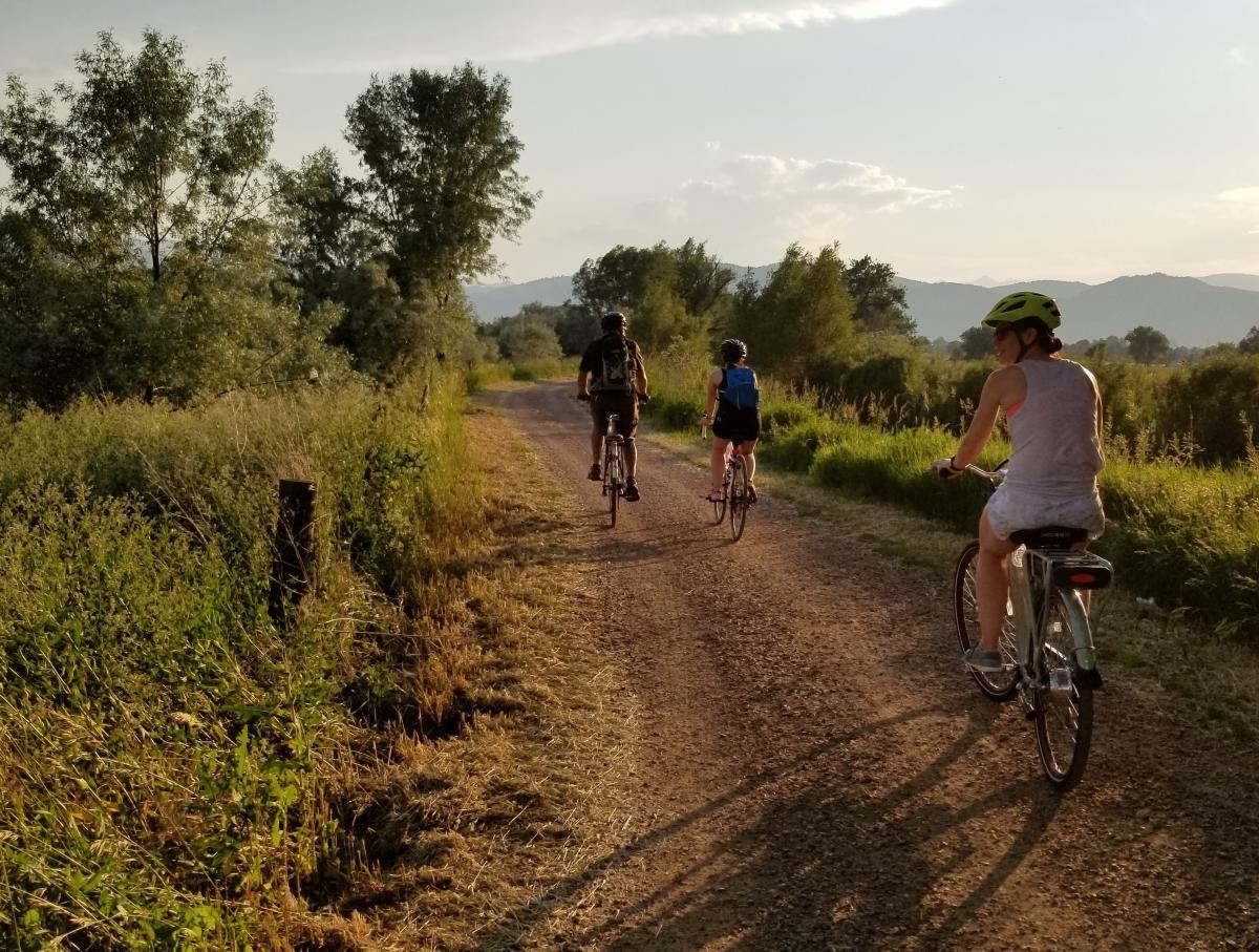 Family biking on road during a farm tour