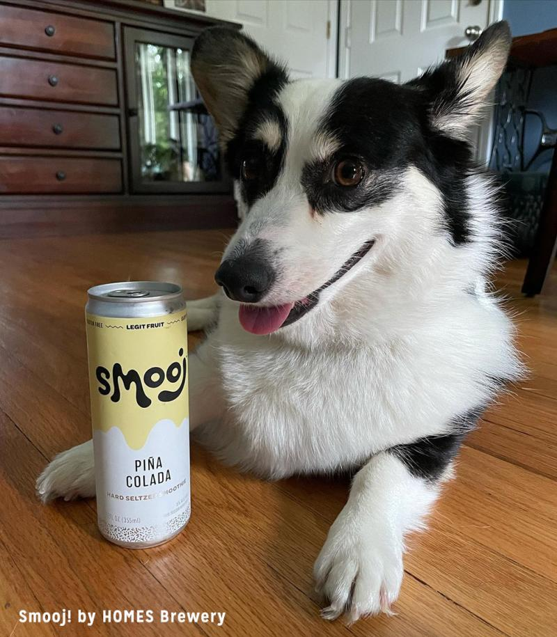Dog with Smooj! from HOMES Brewery