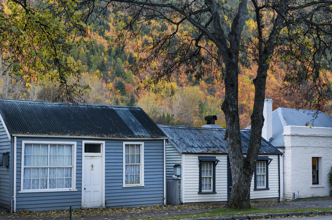 Arrowtown cottages in Autumn
