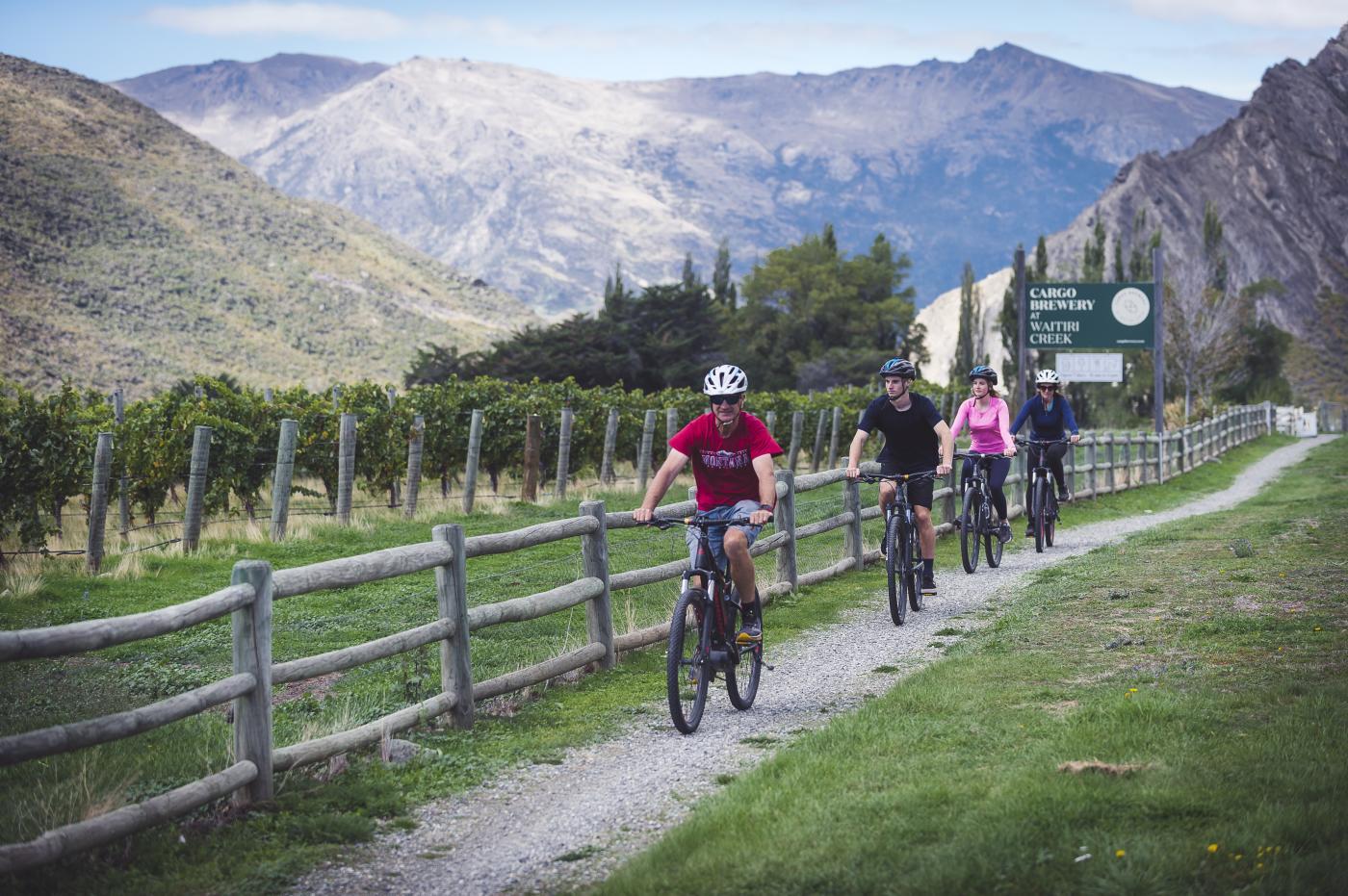 Around The Basin Biking Winery Tour