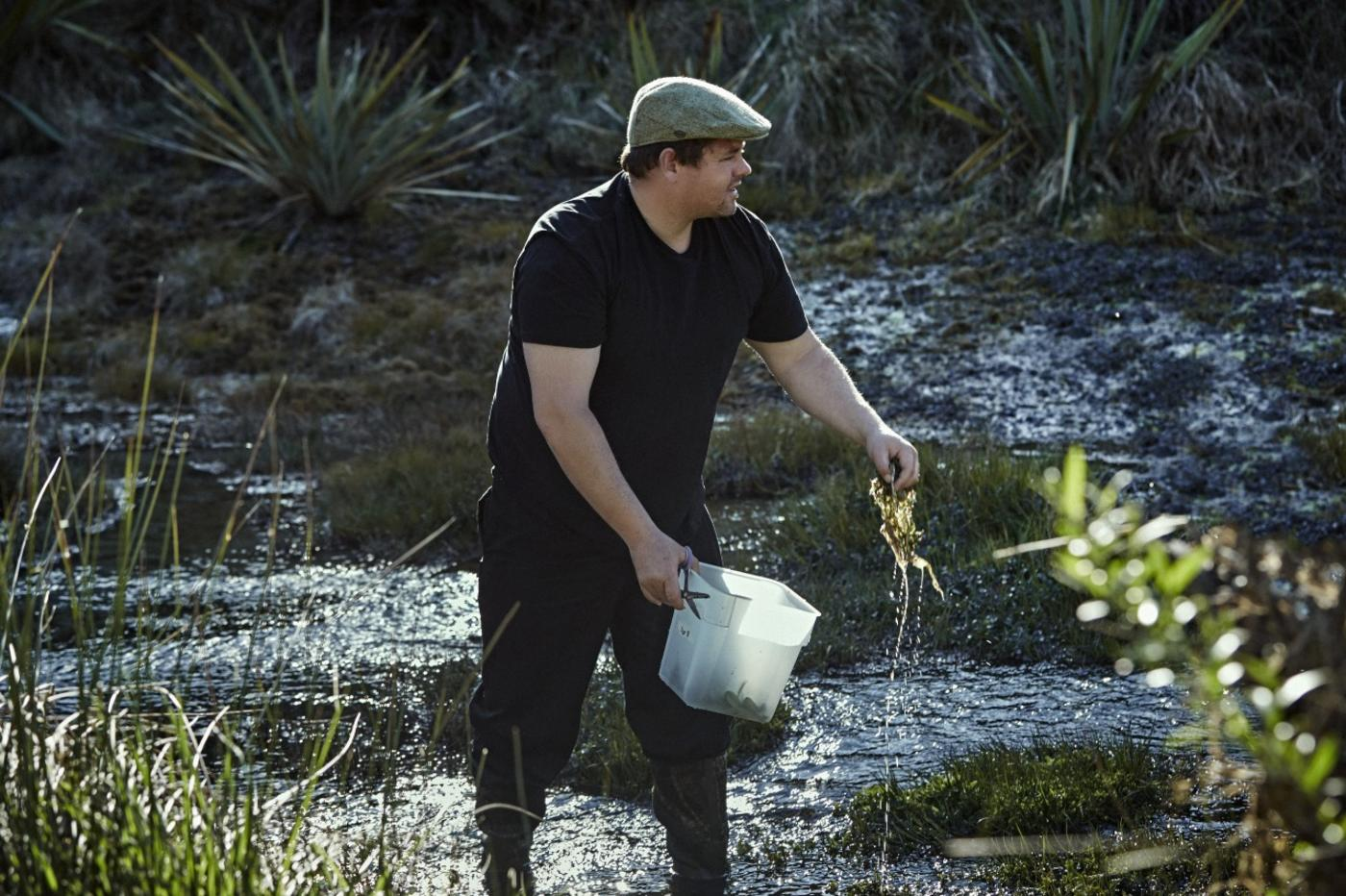 Vaughan Mabee foraging for watercress