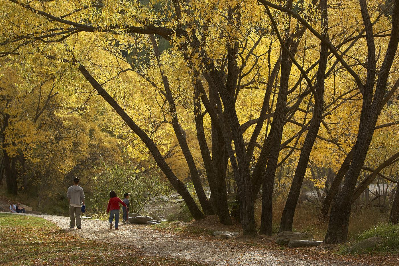 Arrow River Trail in Autumn, Arrowtown