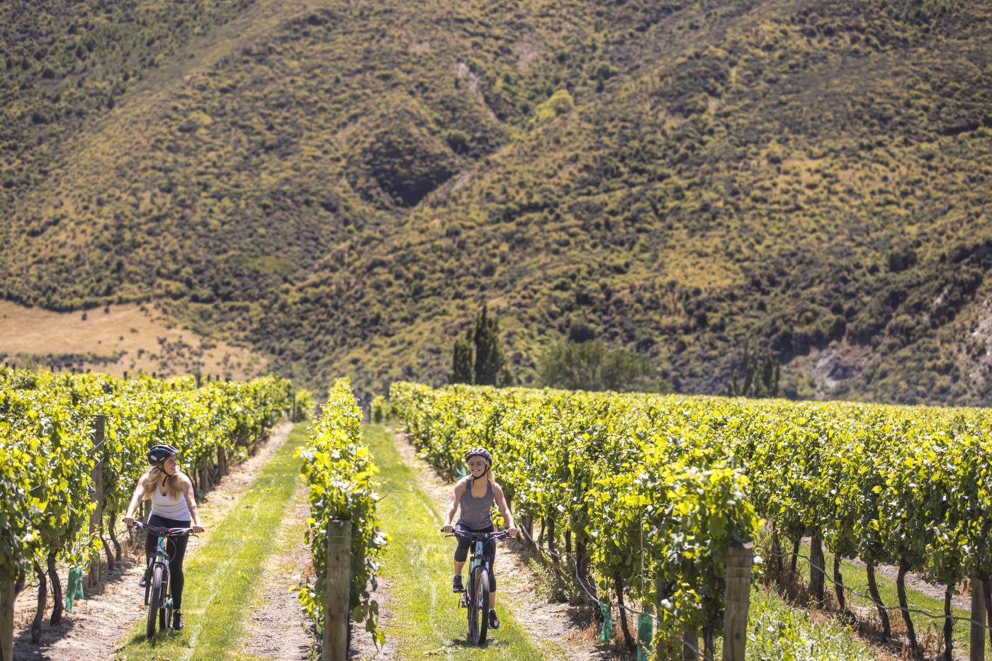 Friends biking through the vines in Gibbston
