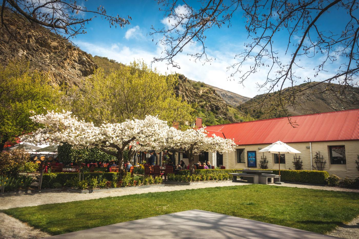 Gibbston Valley Winery Cellar Door Garden in Spring