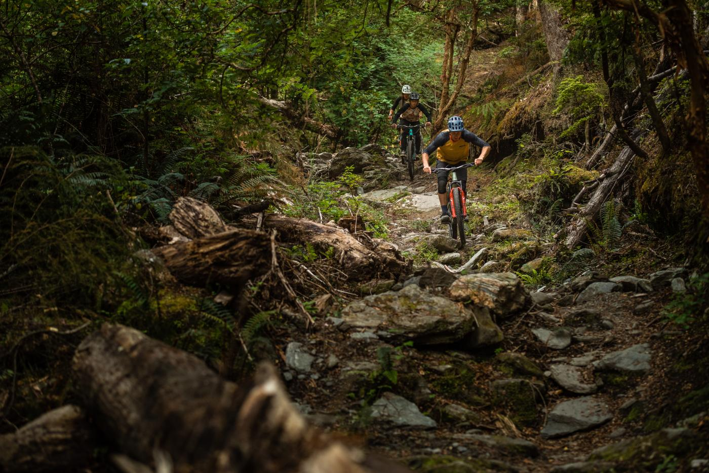 Mountain Biking Salmon Run, Queenstown