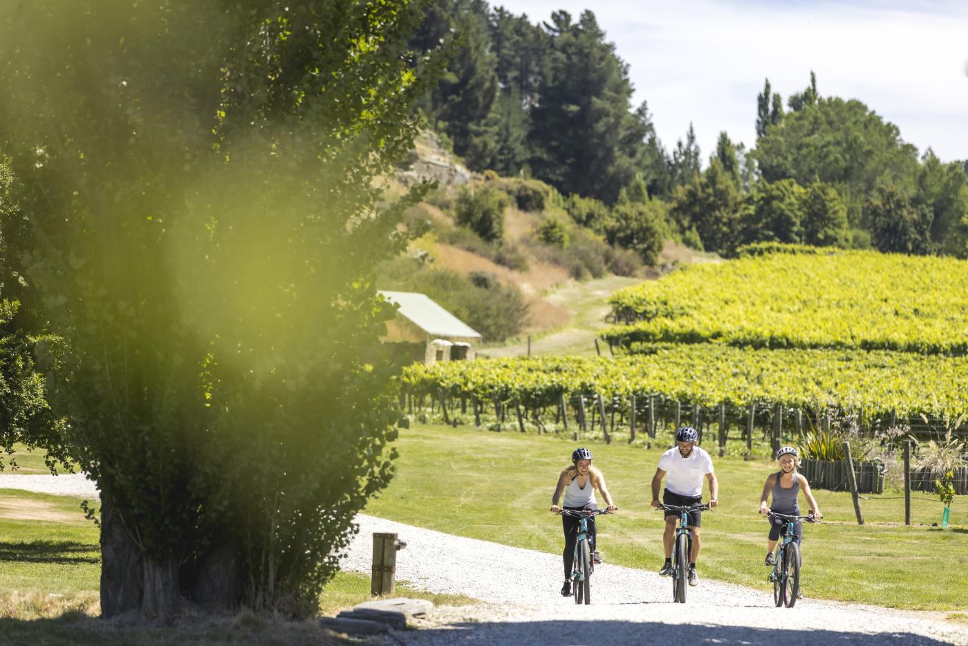 Friends Biking Gibbston Wineries in summer