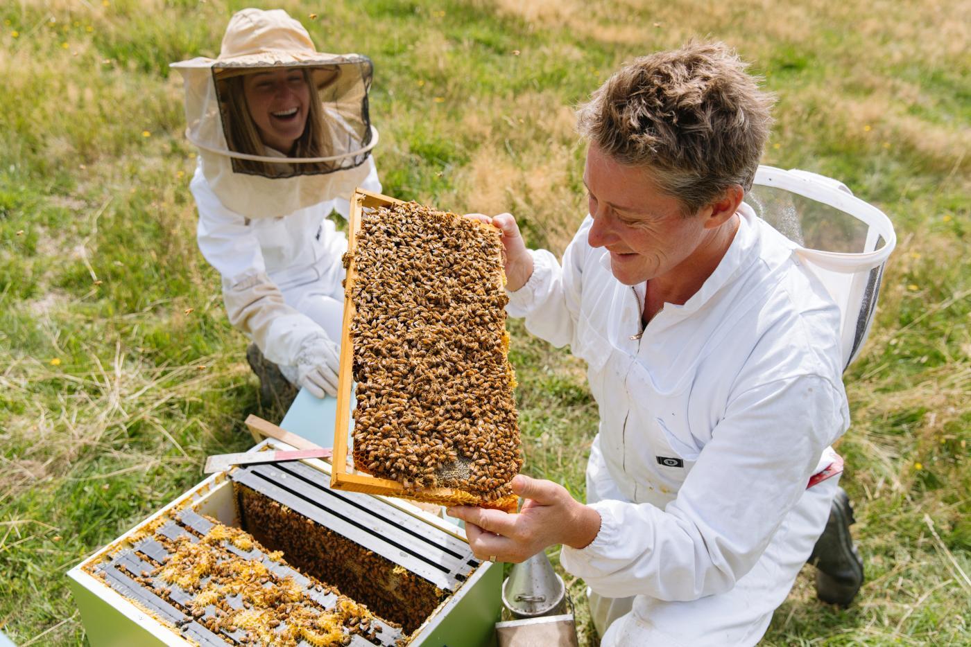 Beekeeping at Buzzstop Honey Centre