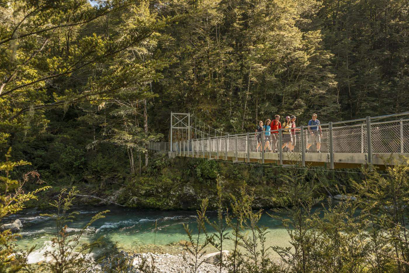 Routeburn Track Guided Hike with Active Adventures
