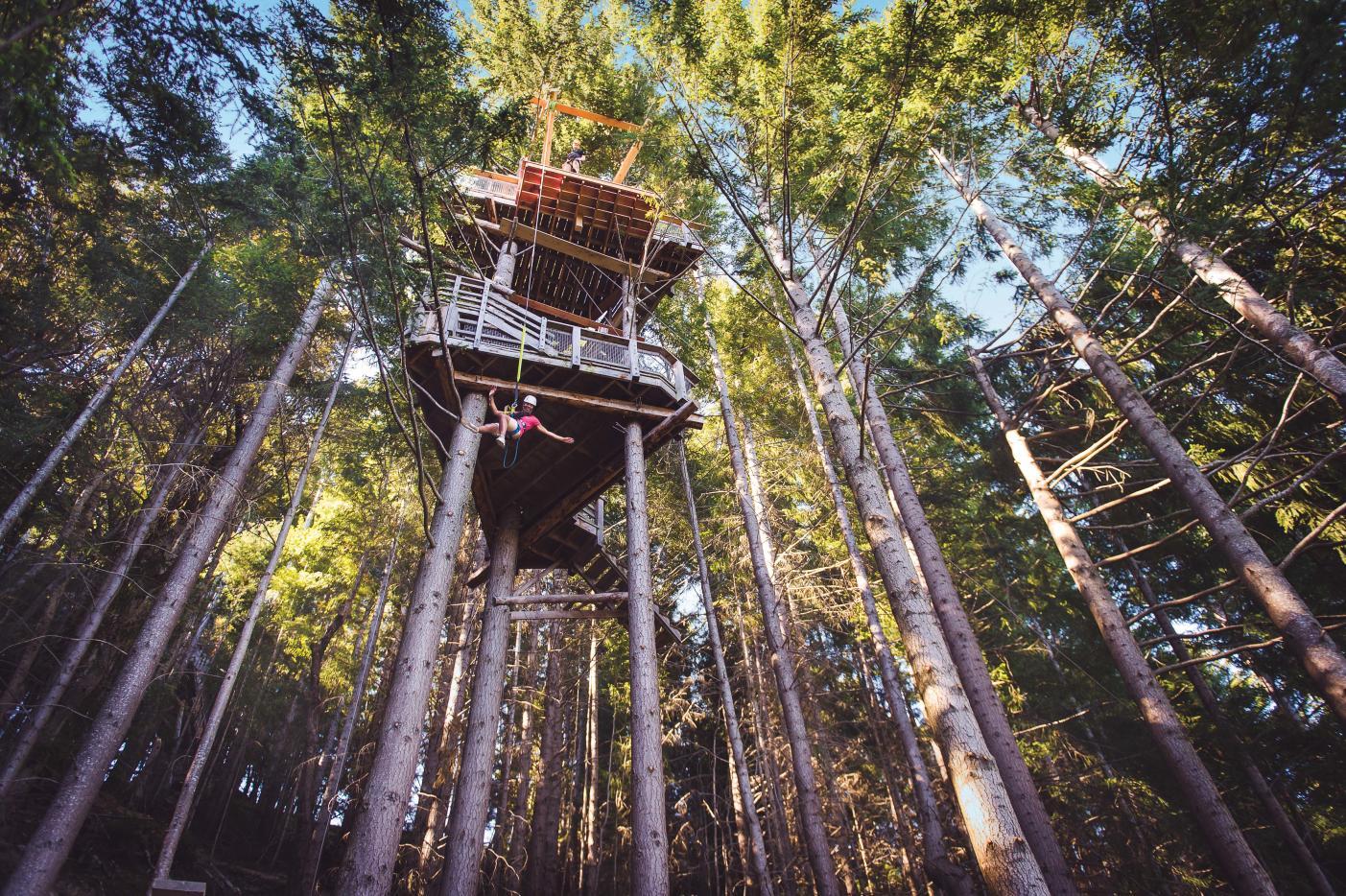 Queenstown Cares initiative about ziplining activity Ziptrek Ecotours on Bob's Peak