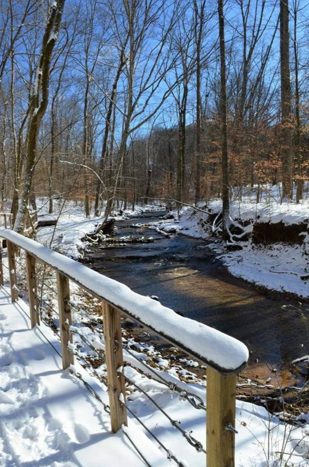 snow covered bridge by a creek in the woods