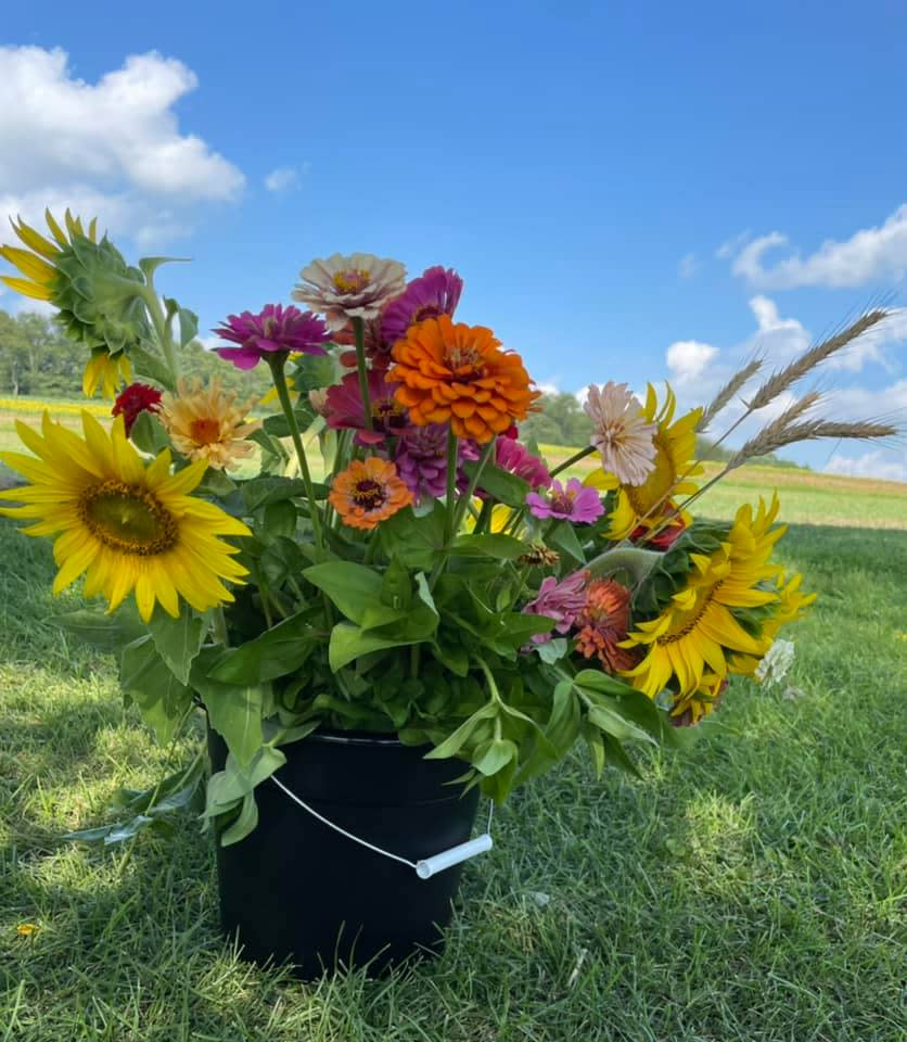 Maple Bottom Farm Flowers
