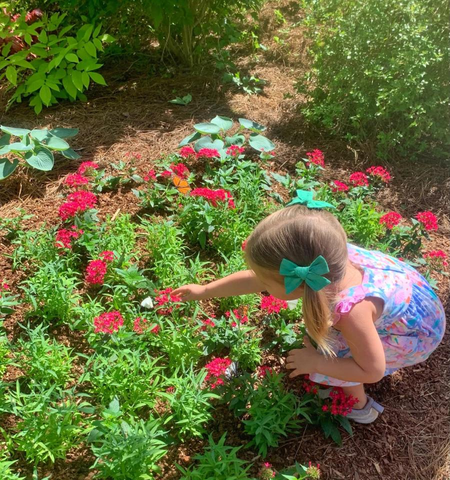 Purdy Butterfly House - Huntsville Botanical Garden