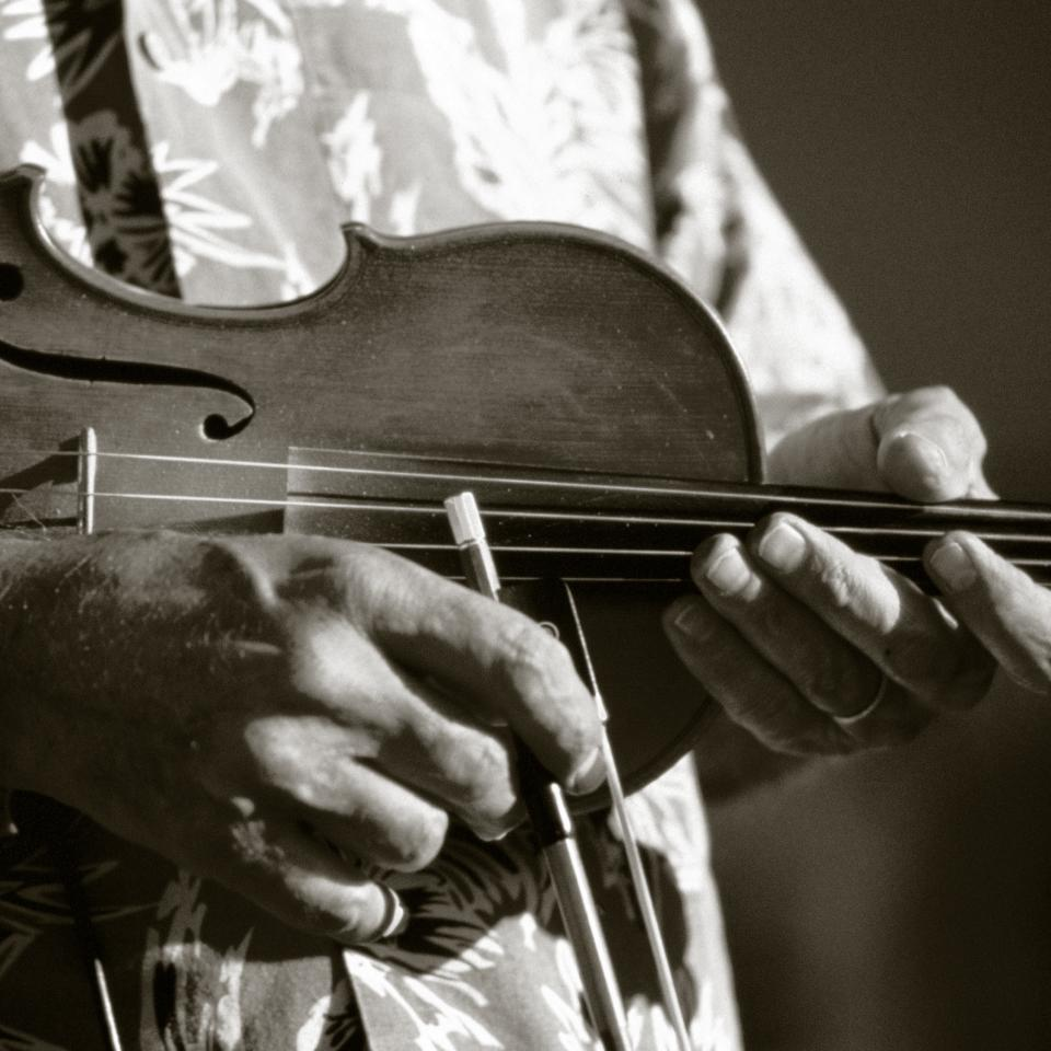 Fiddle - Duotone