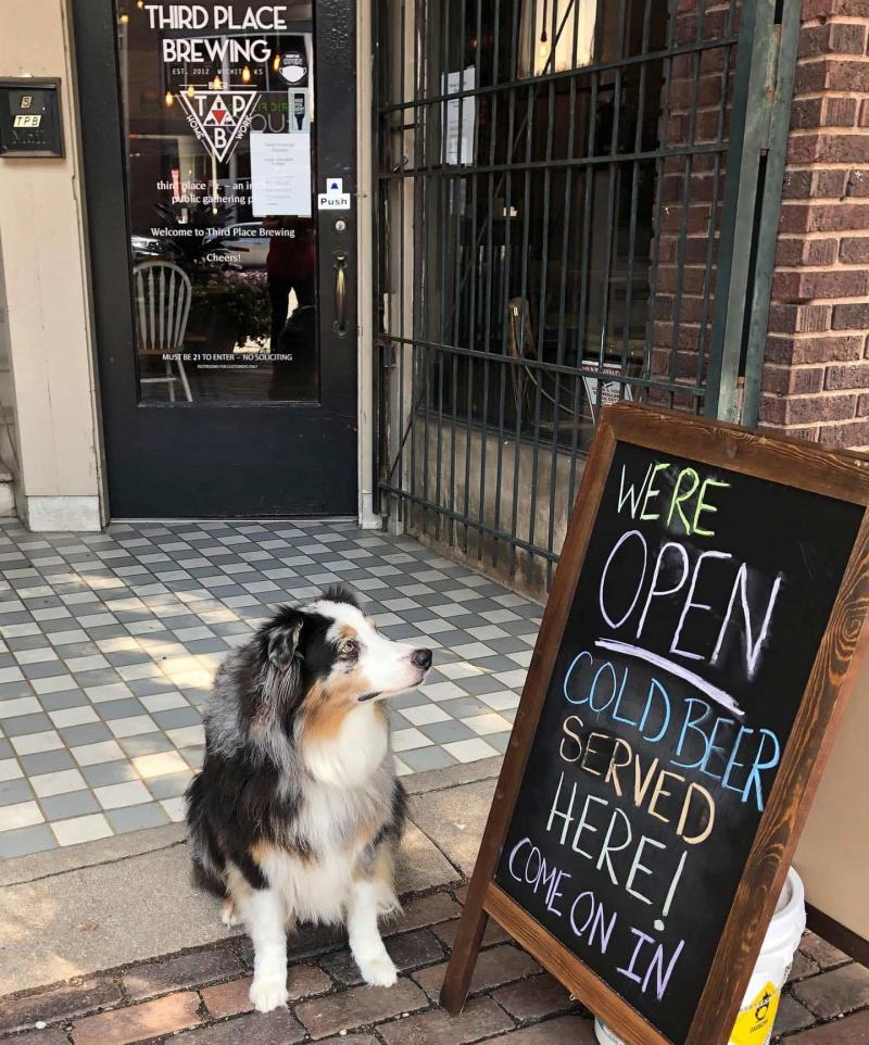 Pet-friendly at Third Place Brewing in Wichita