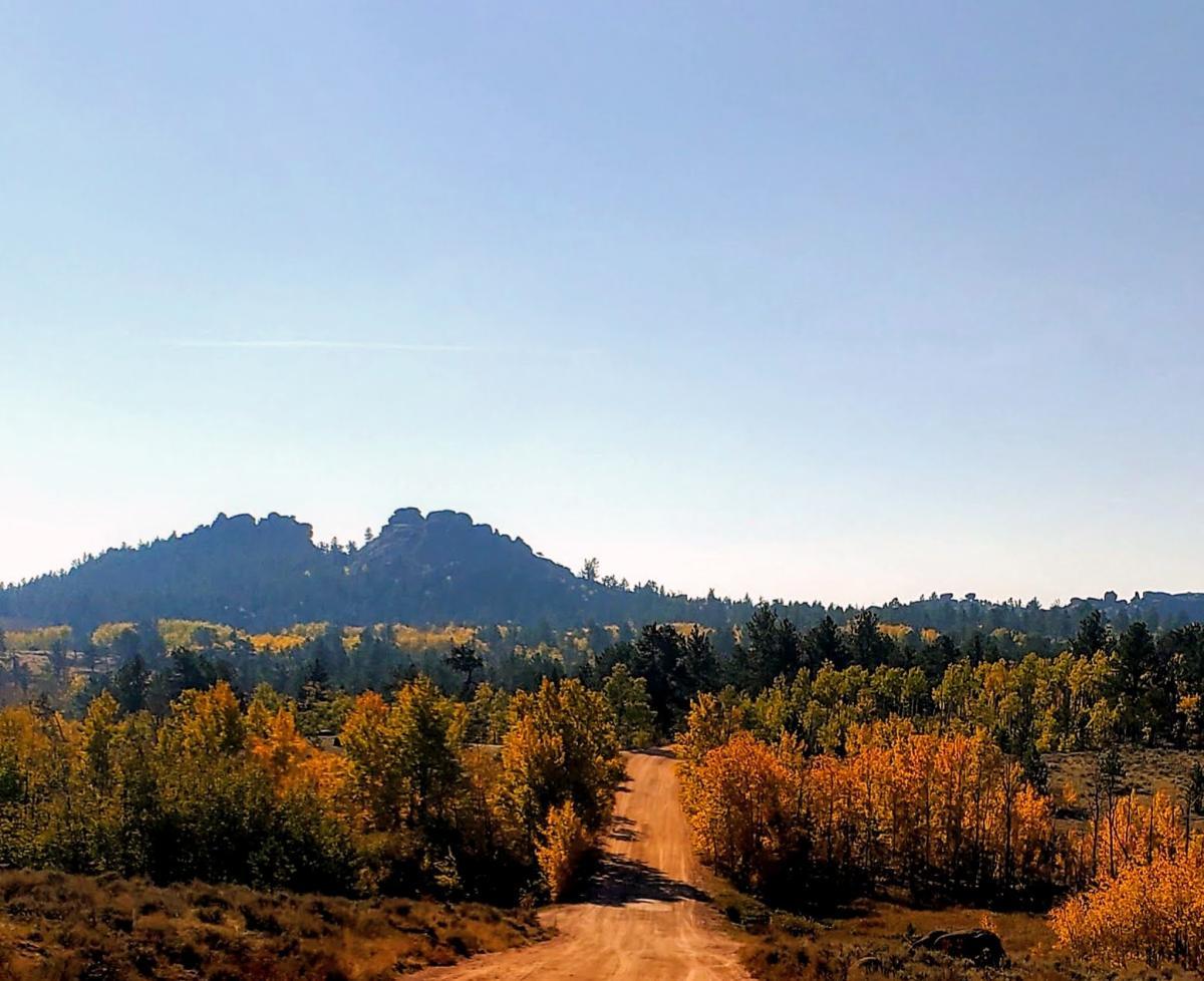 fall sights