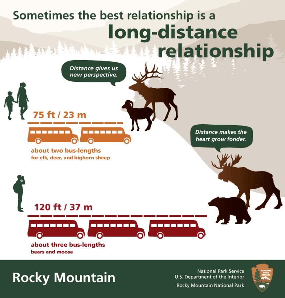 wildlife distance