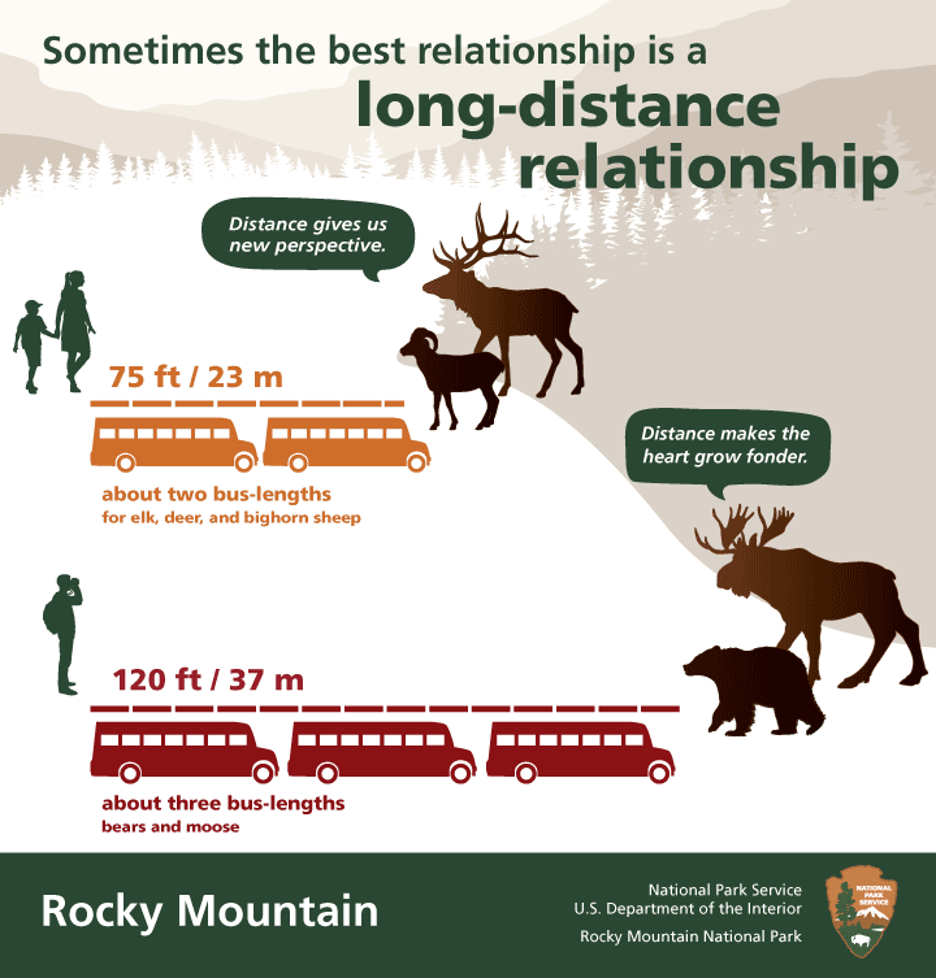 safe elk viewing rmnp graphic