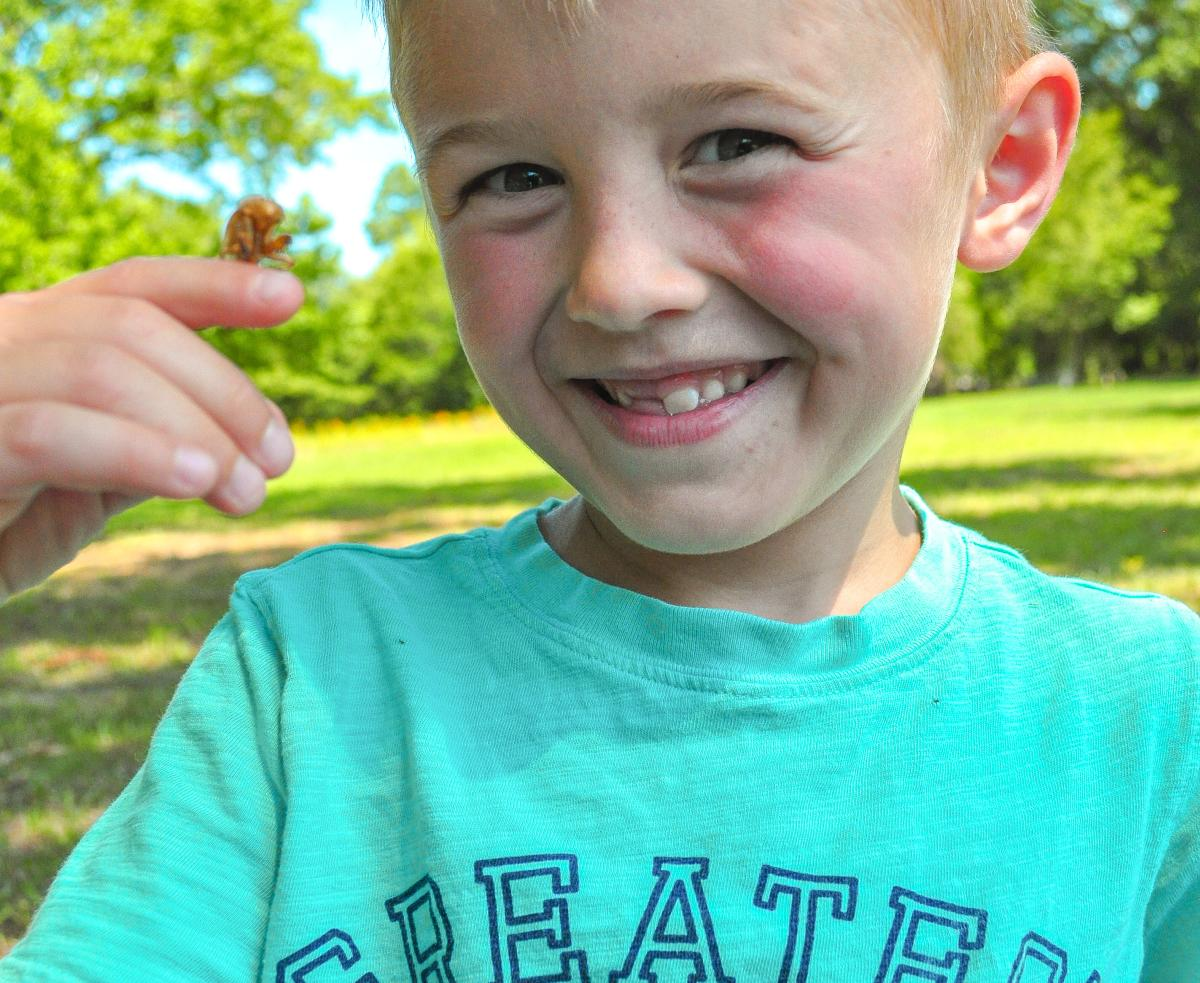 Child with insect on finger at Lockerly Adventure