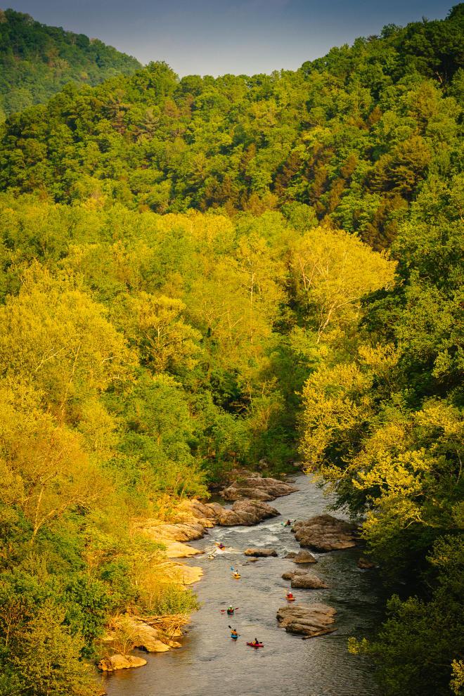 Kayaking - Roanoke River - Explore Park