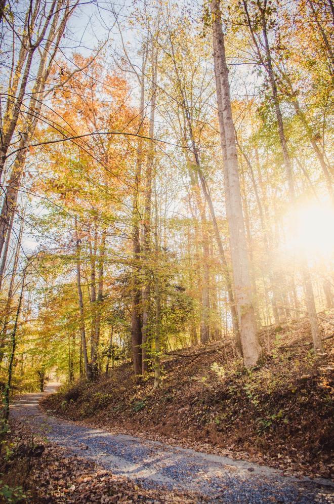 Explore Park - Roanoke County, VA
