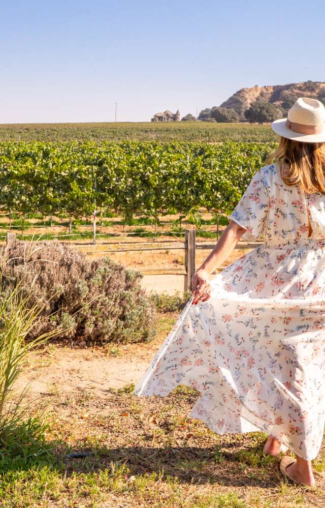 Woman In Dress With Glass Of Wine At Salinas Valley Vineyard River Road Wine Trail In Monterey County
