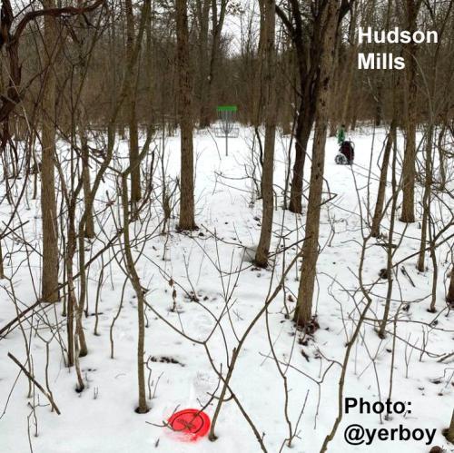 Winter Disc Golf in Hudson Mills, Ann Arbor