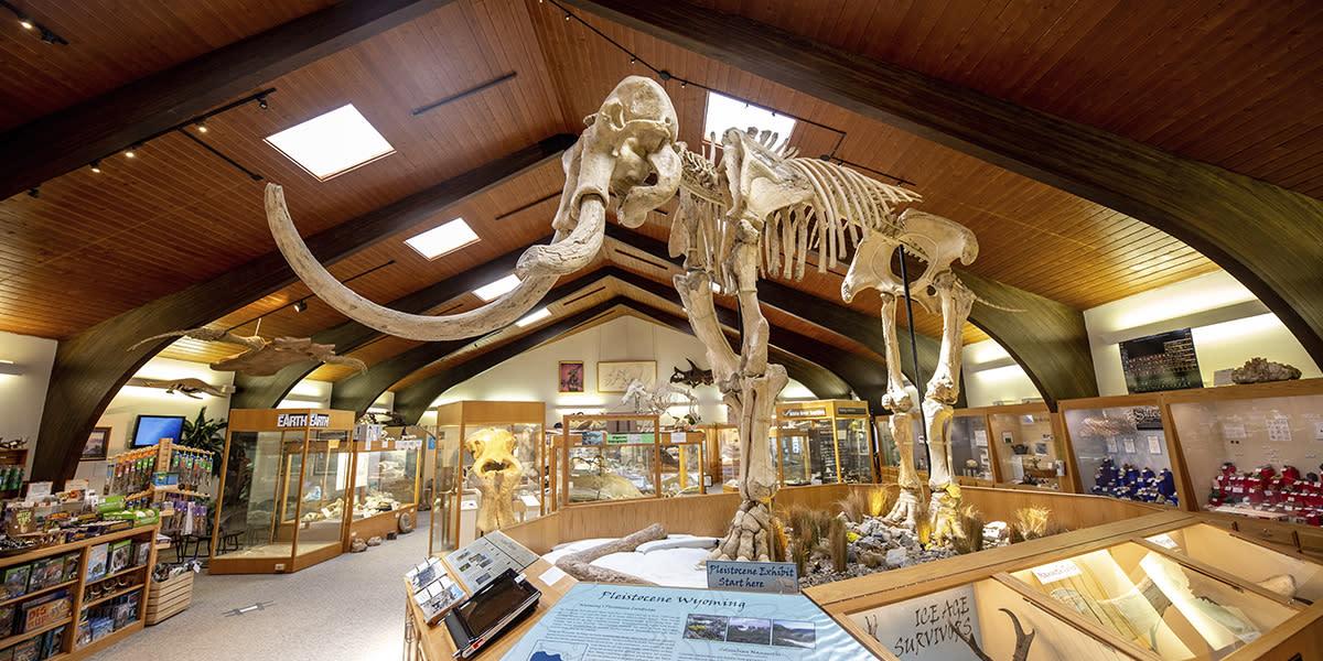 Dee Tate Geological Museum