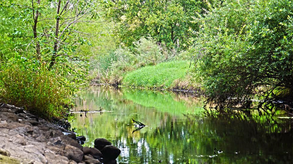 palmer_lake