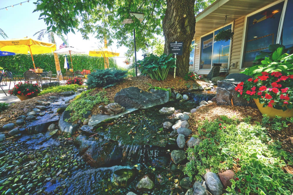 the-lookout-patio-pond