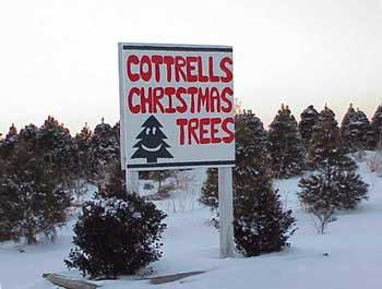 Cottrell's Tree Farm