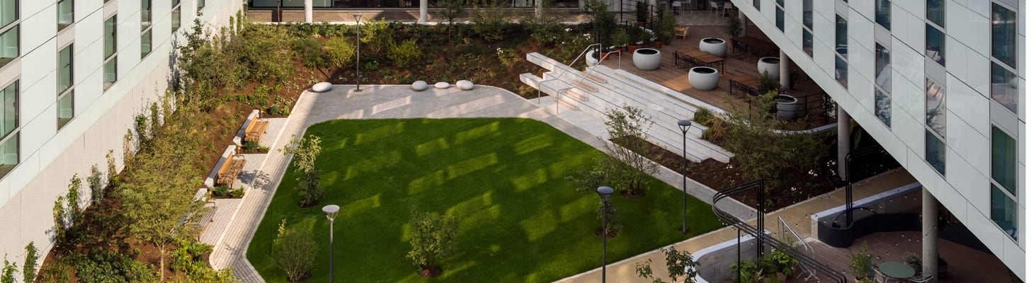The Courtyard Garden at Turing Locke, Cambridge. A green space filled with shrubs and seating areas.