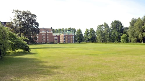 Spacious Lawns, ideal for drinks receptions and team building events, with the backdrop of the modern Homerton College building with tall trees both sides of the building, ideal space for
