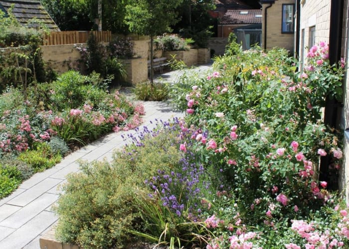 WYNG Gardens