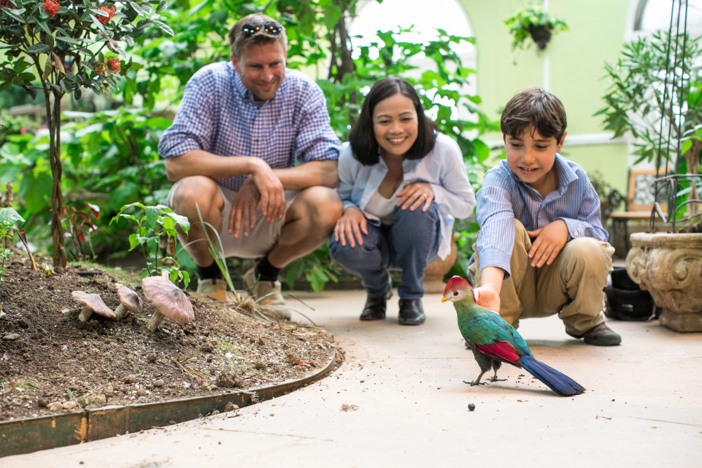 Family with bird