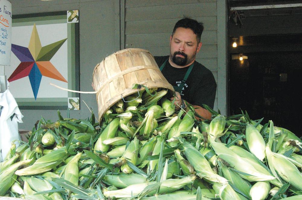 Dumping Corn.