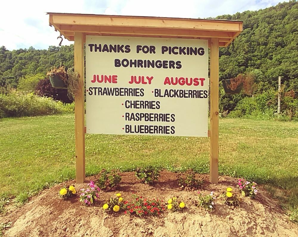 signage for Bohringer's