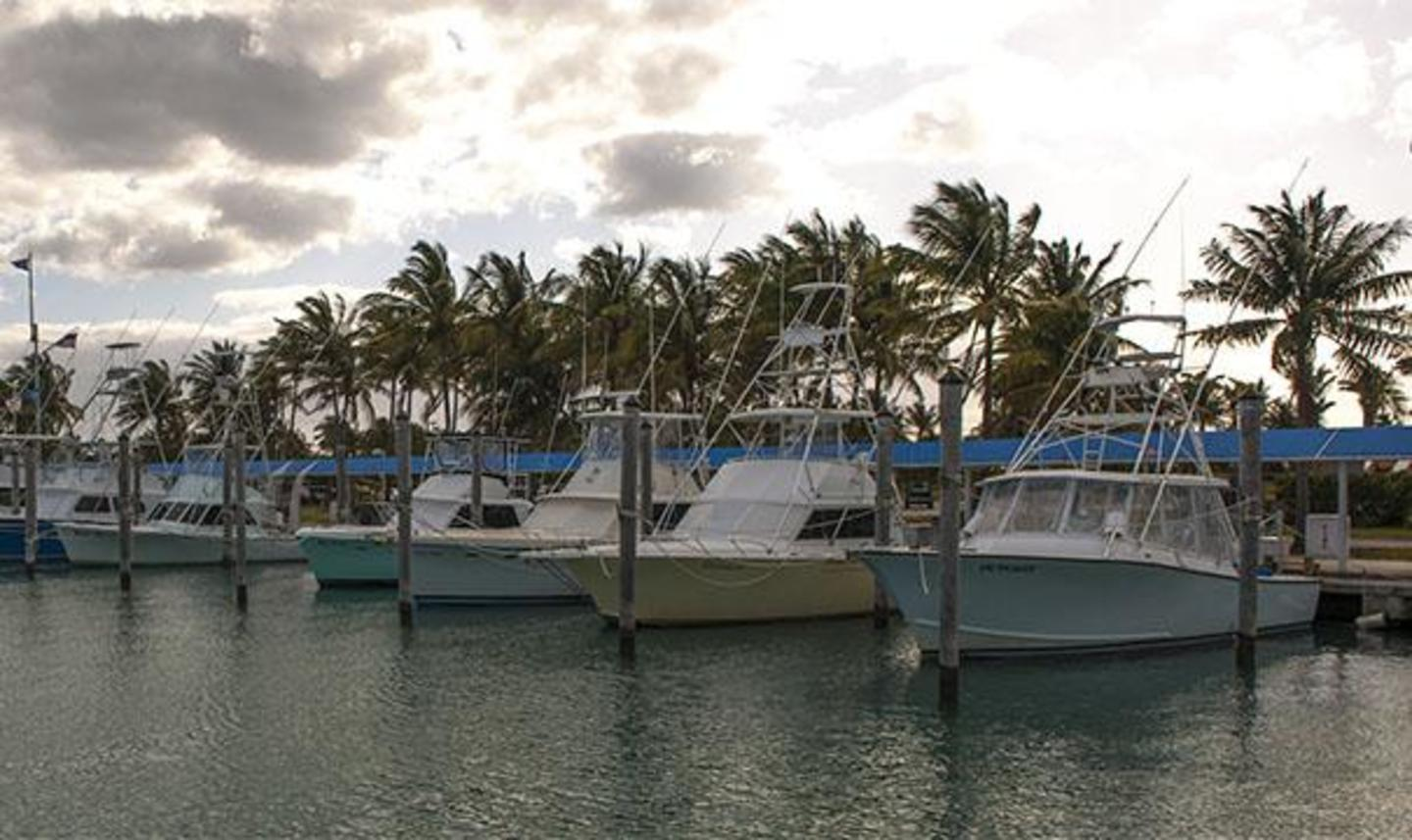 Charter Boats at Bill Bird Marina at Haulover Park