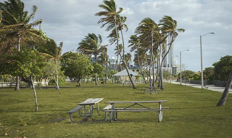 Haulover Beach Park Miami Florida