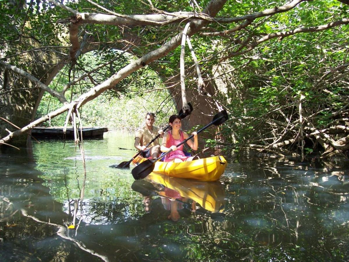 Great Discoveries on the Bay - A Kayak Journey