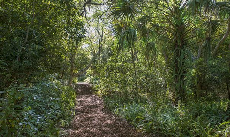 Arch Creek Park & Nature Center Nature trail