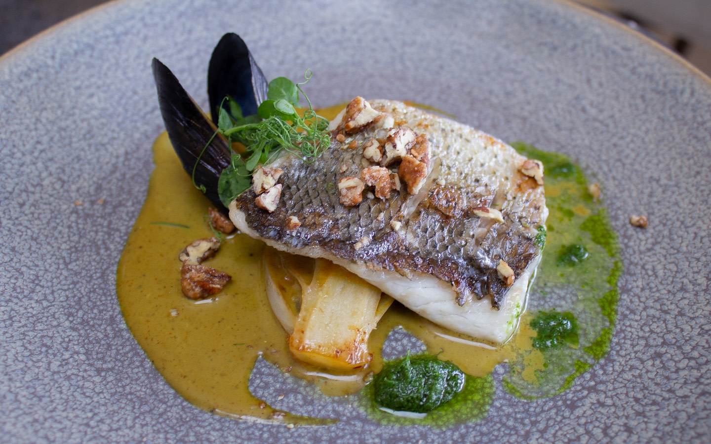 Striped Bass, Orange Braised Endive, Toasted Pecan, Vandouvan Mussel Froth