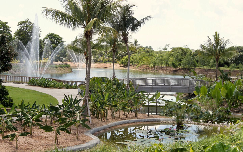 Fruit & Spice Park fuentes