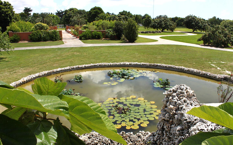 Fruit & Spice Park estanque