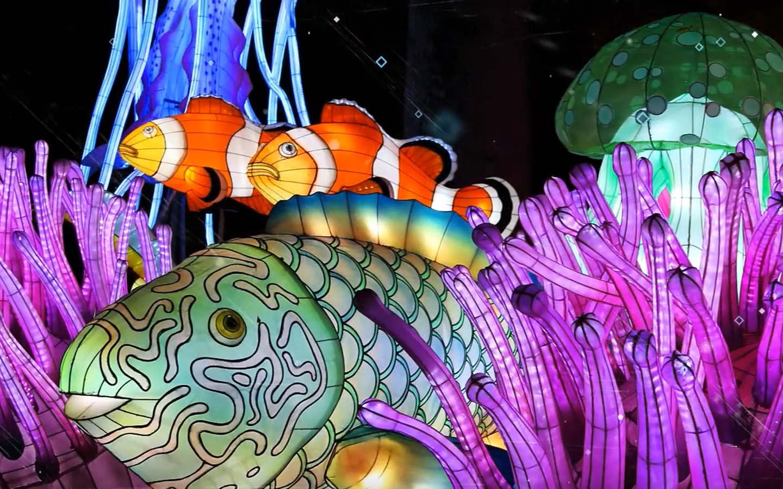 Luminosa Festival of Lights at Jungle Island
