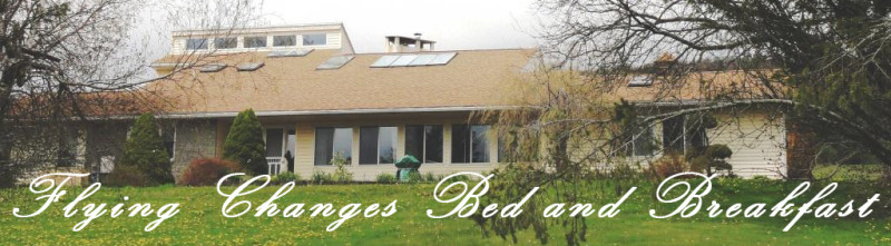 Flying Changes Bed & Breakfast